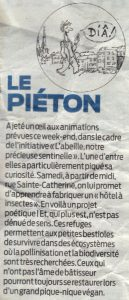 article_ste_catherine